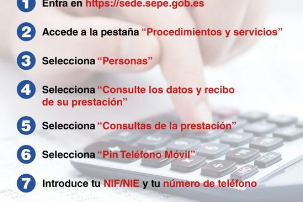 COMO VER TU PRESTACION PIN MOVIL